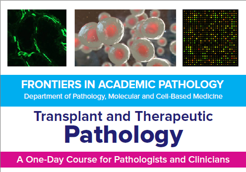 2020 Frontiers in Academic Pathology: Transplant & Therapeutic Pathology Banner